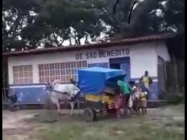 Penalva/MA: Prefeitura inova e aluga carroça em lugar de ônibus escolar