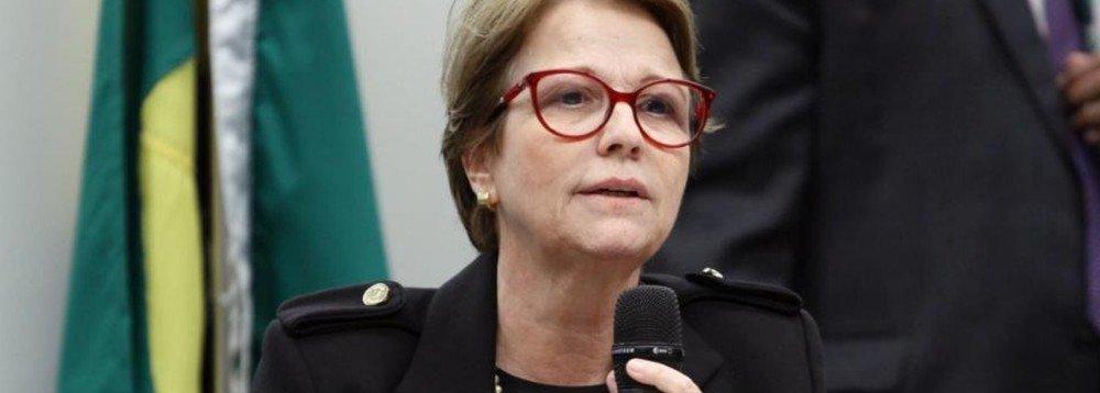 'BRASILEIRO NÃO PASSA MUITA FOME PORQUE TEM MUITA MANGA', DIZ MINISTRA DA AGRICULTURA